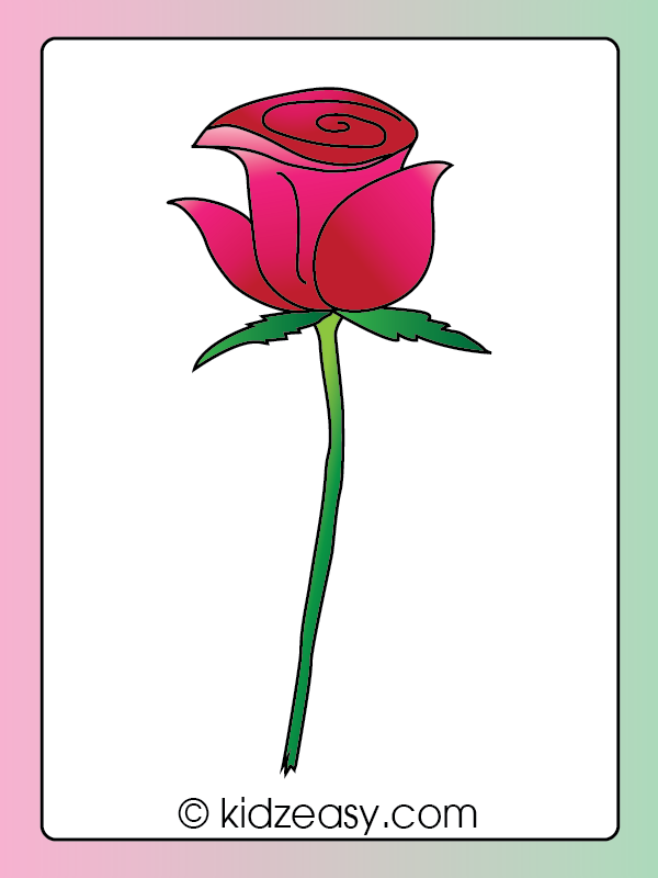 Coloring a Rose